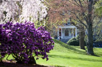 view of flowers and purple bush in front of okane hall in the spring